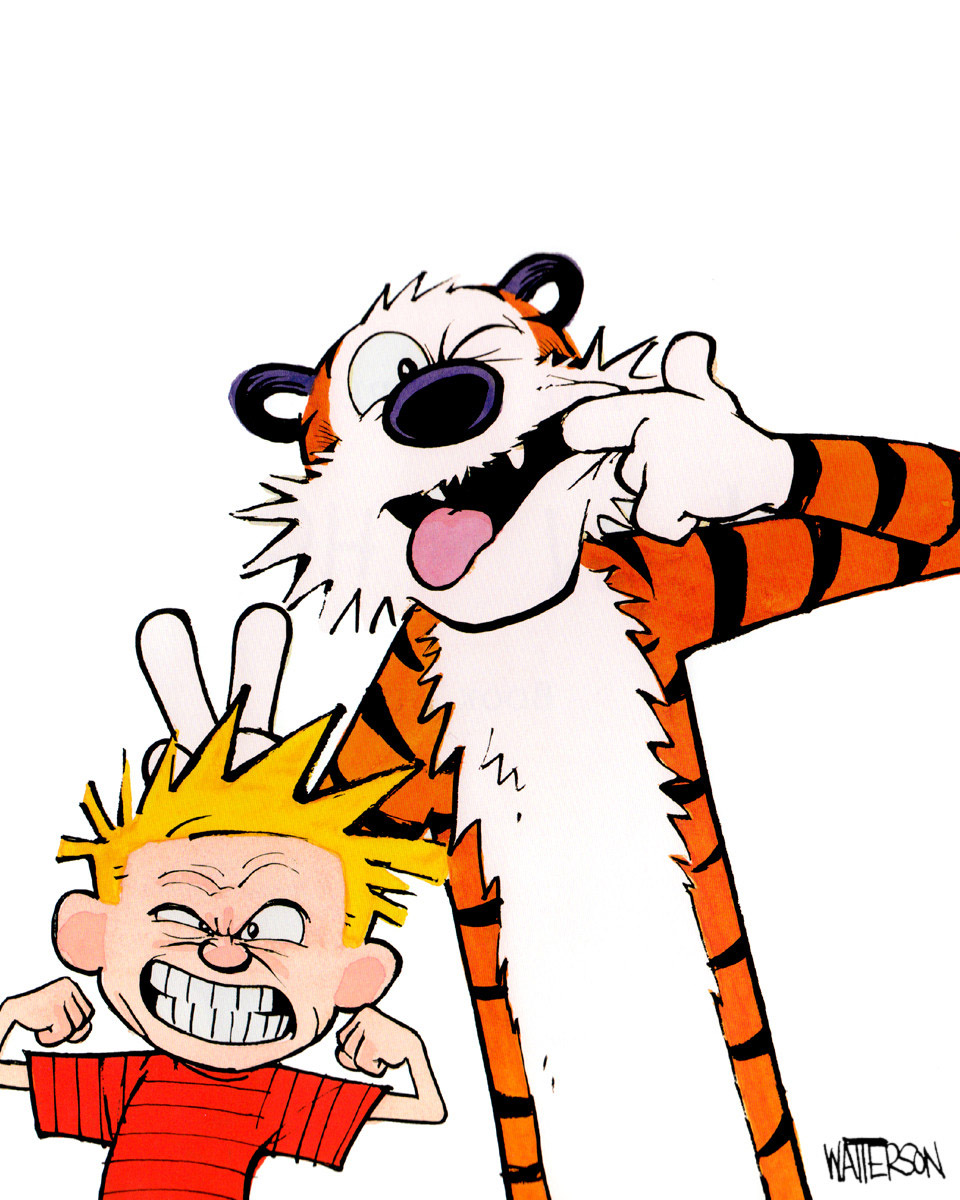 Calvin Hobbes techbizdesign hall of fame